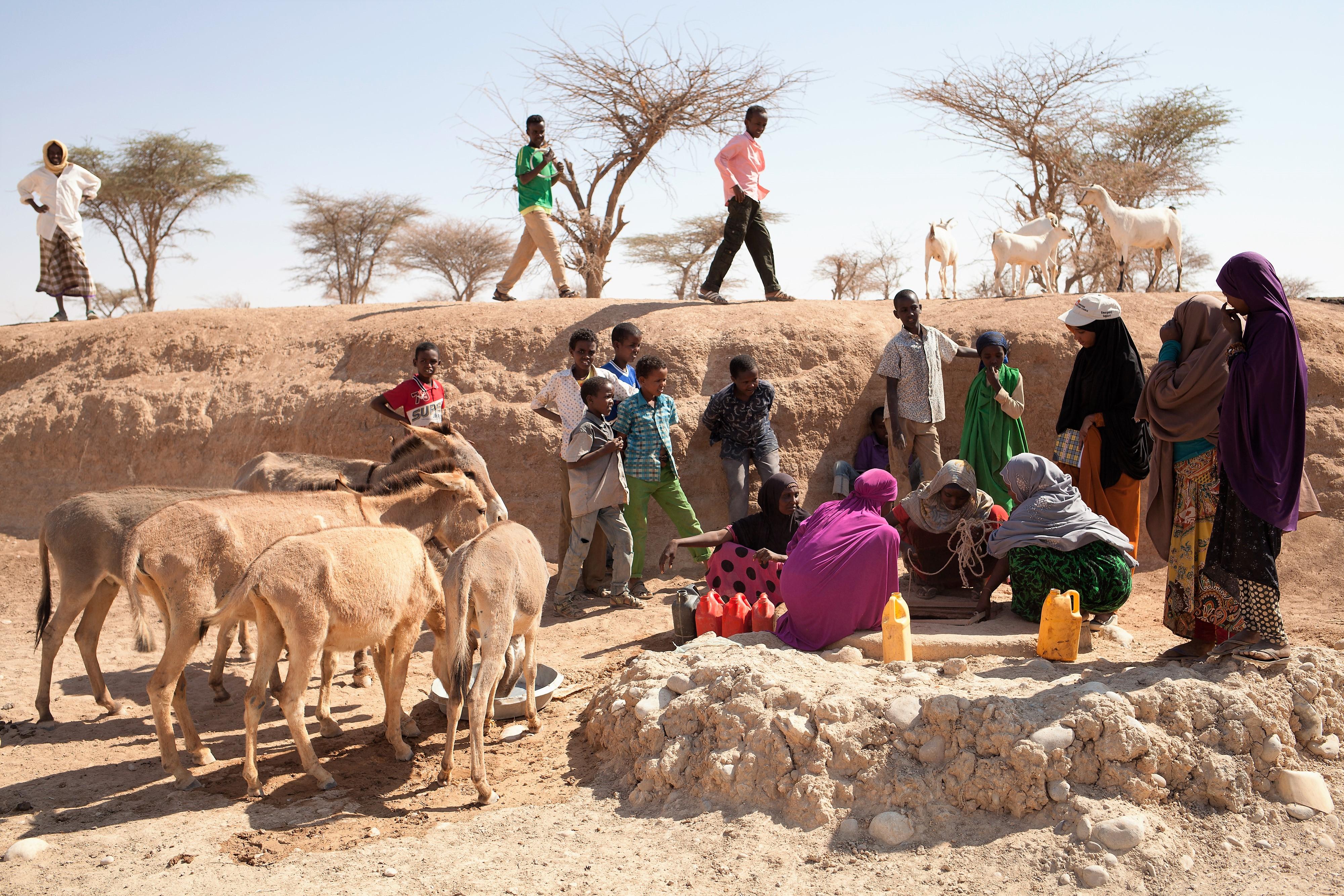 Emergencia en Somalia