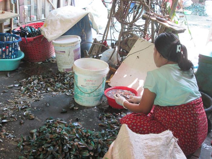 Mee Mee trabaja limpiando mejillones desde las 3 de la madrugada por 16 bahts (0,40 €) al día. Foto Patricia Garrido/Manos Unidas