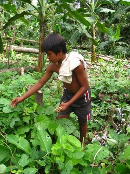 Pueblos indígenas Amazonía. Foto: Manos Unidas/Carmen Santaolaya