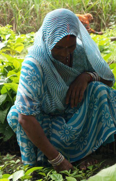 India - Foto Marta Isabel González Manos Unidas - Día Pueblos Indígenas