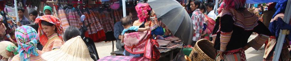 Plántale cara al hambre: Siembra - #ManosUnidasSiembra