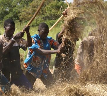 Jóvenes africanos: el desafío de cambiar su historia