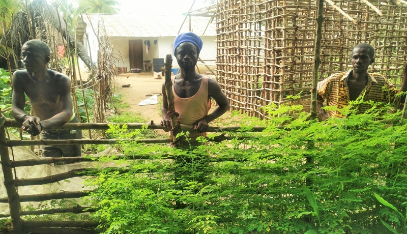 Sierra Leona. Foto: Salesianos