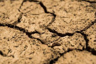 Tierra seca y agrietada