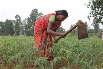Mejora de la situación socio-económica de las mujeres sin casta del distrito de Ballía, India