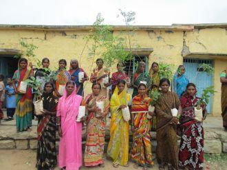 Mujeres de la India preparas para plantar árboles