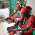 Las mujeres productoras preparando jugo de tomate. Foto: Manos Unidas
