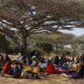 Sobrevivir en África