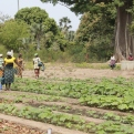 Senegal - Foto Manos Unidas