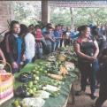 Mejora de alimentación y organización campesina. Manos Unidas Valencia