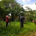 Senegal - Convenio Manos Unidas AECID - Foto Adele Lassalas - Reforestación en bosque comunitario
