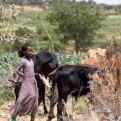 Fana, Día Universal del Niño, Etiopía.
