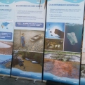Exposición del agua durante la jornada