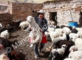 Bolivia. Manos Unidas/Ana Pérez