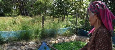 Adaptación al cambio climático y mejora de la resiliencia en comunidades rurales en Camboya. Foto: Manos Unidas/Patricia Garrido
