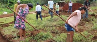 Proyecto Manos Unidas Brasil