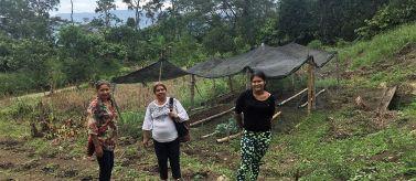 Seguridad alimentaria para defensa y permanencia de los campesinos en sus territorios. Foto: Manos Unidas