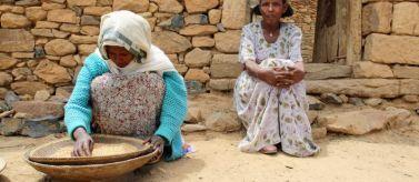 El hambre en el mundo vuelve a aumentar