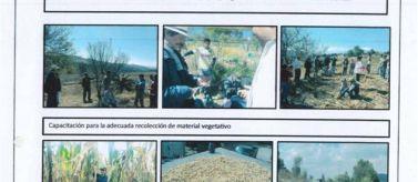 MÉXICO – AMÉRICA (MEX/70526/LVI B)AGRICULTURA AGROECOLÓGICA Y GENERACIÓNDE INGRESOS