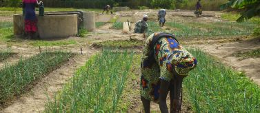 Convenio Senegal AECID Manos Unidas