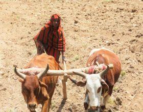 Halima Abdala cambio sus destino en Etiopía. Foto:Manos Unidas/Marta Carreño