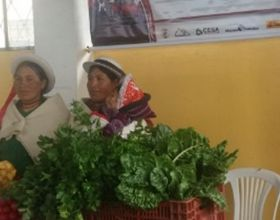 La Organización de mujeres San Francisco Cuatro Esquinas e la exposición de Palmira