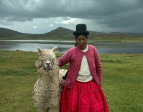 Mujeres productoras alpaca Foto: Manos Unidas/ Mariana Ugarte