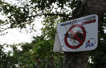 Chagas, un mal del que nadie habla. Foto: Manos Unidas / Marta Isabel González