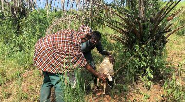 Una alumna de la Escuela CEFAN en Camerún. Foto:Manos Unidas
