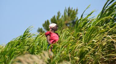 Malaui - Foto Beatriz Hernáez - Manos Unidas