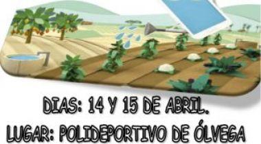 II Campeonato de España rugby en silla de ruedas. Olvega (Soria)