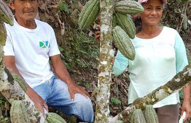 Ana y Lorenzo - Cultivo de cacao - Foto Fundación Maquita, Ecuador