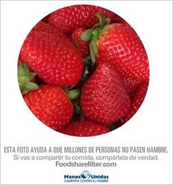 FoodShareFilter. Foto Marisa Elosua